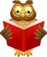 KiwiSaver - Wise Owl